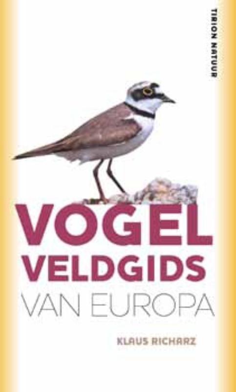 Yolanthe Van Meeuwen