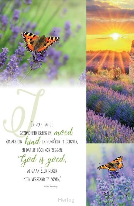 Gedicht Beterschap Christelijk Gedichten Ideen