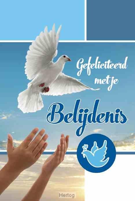 gefeliciteerd met je belijdenis Wenskaart   Gefeliciteerd met je Belijdenis   65508226 gefeliciteerd met je belijdenis